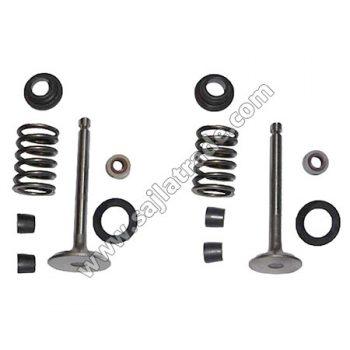 Set (ventili, gumice, opruge, podmetači) / KIPOR 178F